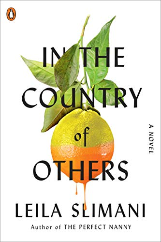 In the Country of Others: A Novel