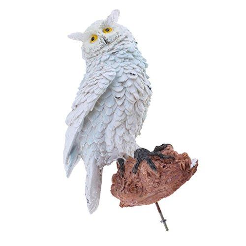 Homyl Gartendeko Kauz Eule Gartenfigur Uhu Wald Vogel Statue Zaunhocker Zaungast als Hiingucker im Garten - Weiß