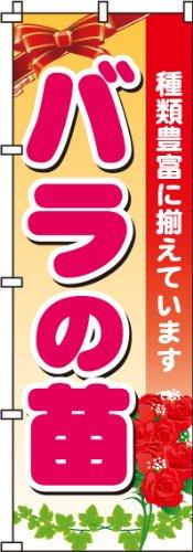 のぼり バラの苗 0240084IN