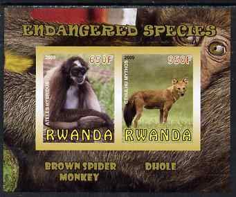 Rwanda 2009 Endangered Species - Spider Monkey & Dhole imperf sheetlet 2 values u/m ANIMALS APES DHOLES JandRStamps