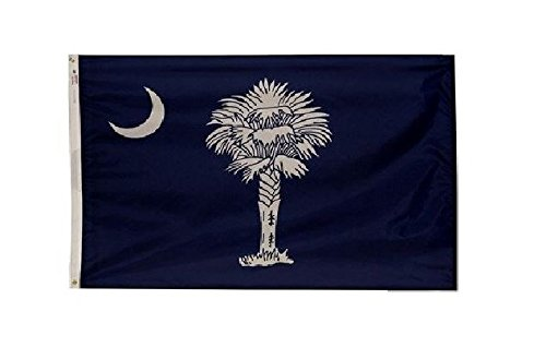 Valley Forge, South Carolina State Flag, Nylon, 3'x5', 100% Made in USA, Canvas Header, Heavy-Duty Brass Grommets