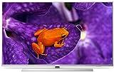 Philips 65HFL6114U MediaSuite Hotel-TV 126 cm (50 Zoll)(4K-UHD, Android TV, DVB-T/T2/C, WLAN, HDMI, USB, Ci+)