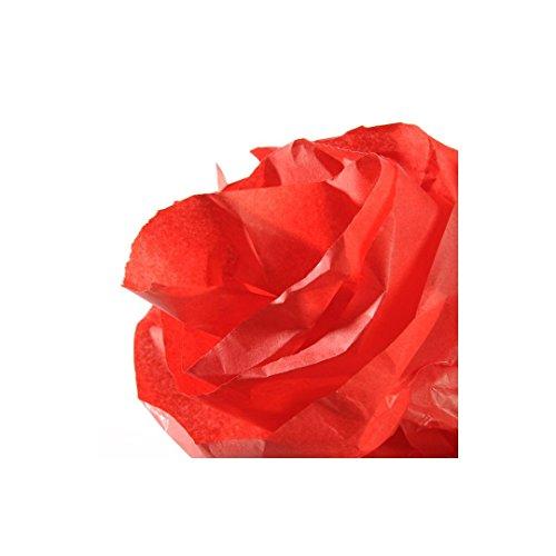 Rollo 50x500 cm, Canson Seda 20g, Rojo
