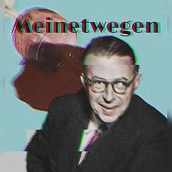MEINETWEGEN (feat. Pro Fundo)