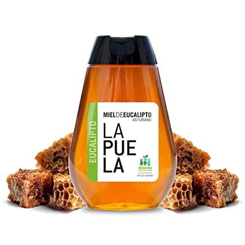 LAPUELA Miel de Eucalipto. Miel de origen natural desde Asturias - Aroma a madera mojada, muy intenso y persistente (350 gr - Dosificador)