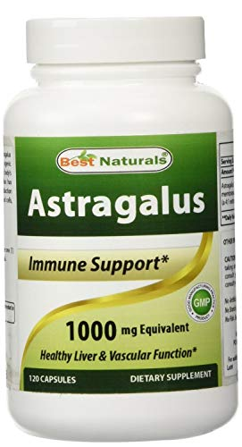 Best Naturals Astragalus Extract 1000 Mg 120 Capsules (Pack of 2)