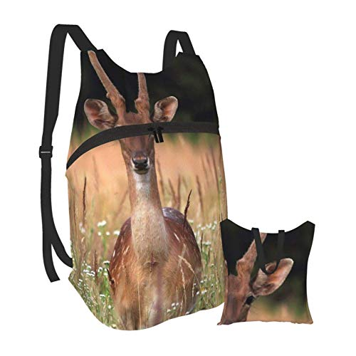 Sika Deer Dog's Tail Grass commerce Anti Theft Slim Durable Laptops Backpack College School Computer Bag Folding Portable Backpack