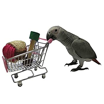 Mini Lovely chariot jouet à mâcher pour perroquet Ara Gris du Gabon Amazones Conure perruche calopsitte Inséparable cacatoès Amazon Lapin Hamster Cage jouer jouet