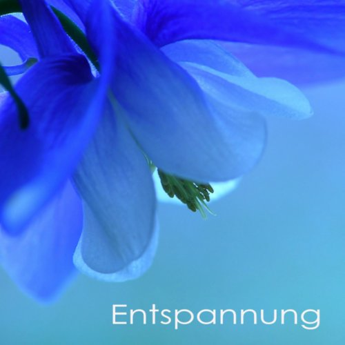 New Age Musik tiefenentspannung (Wellness)