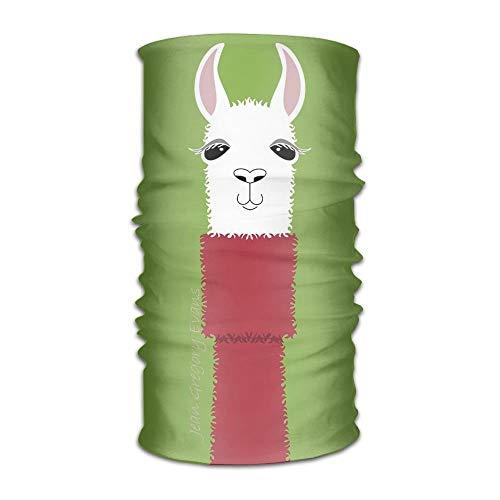 Einst Llama dragen Coltrui Hoofddeksels Voor Mannen En Vrouwen-Yoga Sport Reizen Workout Brede Hoofdbanden, Neck Gaiter, Bandana, Helm Liner, Balaclava, Haar Turban, Sjaal