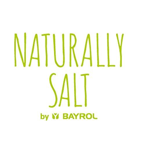 pH Modul für BAYROL Salt Relax PRO