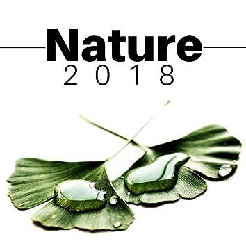 Natura 2018 - i Suoni più Rilassanti della Natura con Musica Strumentale New Age
