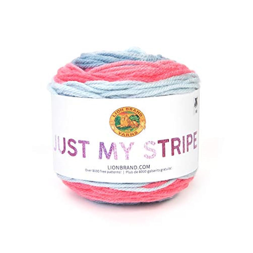 Lion Brand Yarn Just My Stripe Yarn, Bubblegum
