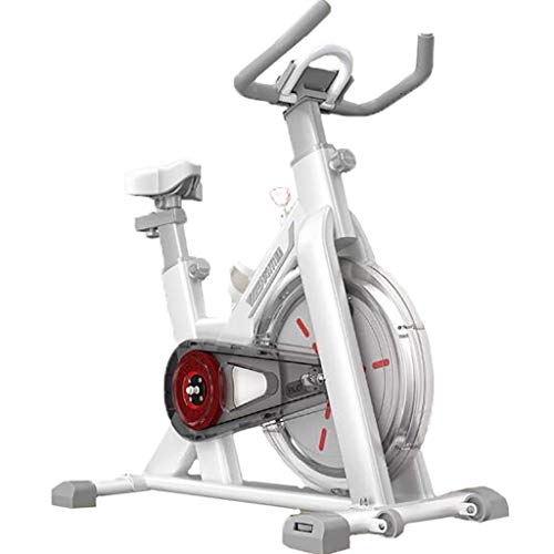 N&W Exercise Bikes Exercise Bike For Home Smart Spinning Bike Ultra-Quiet Cycling Machine Sports Equipment 6kg Fully Surrounded Flywheel Roller Design Moves Easily (Color : White)
