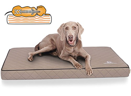 Knuffelwuff Orthopädische Hundematte Juna Hundebett aus laser gestepptem Kunstleder waschbar Hunde ortho orthopädisch memory XXL 110x66cm Grau