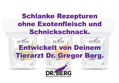Dr. Berg URFLEISCH – Rezeptur für ausgewachsene Hunde – Lamm & Kartoffel (10 kg) - 5