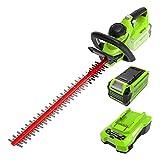 Greenworks Tools 2en1 Podador de altura y cortador de setos telescópico con batería G40PSH, Li-Ion 40 V 51 cm/20 cm longitud de espada 18 mm espesor 240 cm tubo telescópico, sin batería y cargador