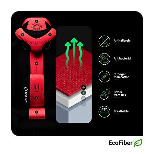 Diablo X-Player 2.0 Silla Gaming Oficina Apoyabrazos 3D Diseño Ergonómico Cuello/Cojín lumbar (Antracita-Carmesí, Normal… 3