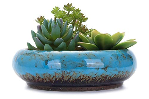 VanEnjoy 7.3 inch Round Large Shallow Succulent Ceramic Glazed Planter Pots with Drainage Hole, Bonsai Pots Garden Decorative Cactus Stand Flower Container (Blue)
