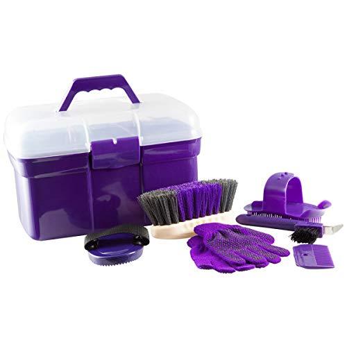 PFIFF 100576 - Caja de Limpieza con Contenido, 6 Piezas