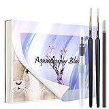 QMEEFB Papel Acuarela A5, Cuaderno para Acuarelas, 40 hojas, 300 g, Bloc de Dibujo, Con lapíz, pincel para depósito de agua y dos Pinceles, Papel para Acuarela, Dibujo, Pintura
