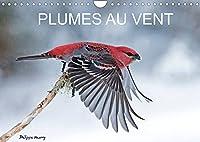 PLUMES AU VENT (Calendrier mural 2022 DIN A4 horizontal): Des oiseaux en action au fil des quatres saisons. (Calendrier mensuel, 14 Pages )