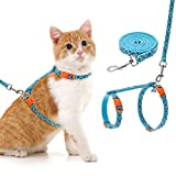 Best cat harness - EXPAWLORER Cat Harness and Leash Set - Ethnic Review