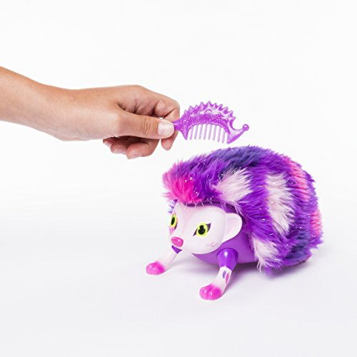 Zoomer Hedgiez, Daisy, Interactive Hedgehog with Lights, Sounds and Sensors, by Spin Master