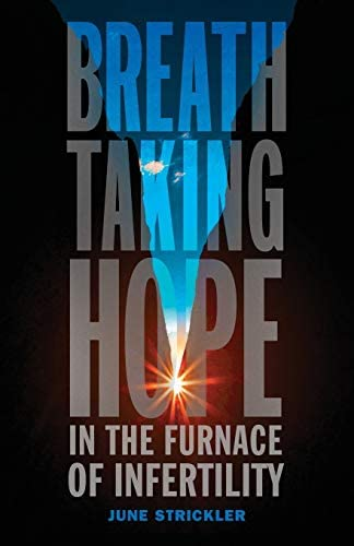 Breathtaking Hope In The Furnace Of Infertility product image