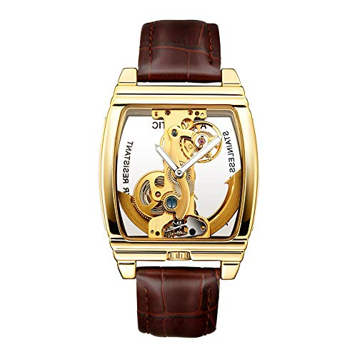 Automatic Watch for Men with Brown Leather Strap Transparent Skeleton...