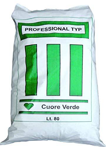 VIALCA TERRICCIO TYP6 TERRICCIO Professionale Ideale per LA Semina ORTO E Giardino LT.80