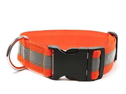 Mystique® Signalhalsband mit Klickverschluss 40mm Neonorange 40-50cm
