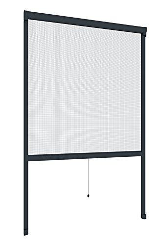 Windhager Insektenschutz Fenster Rollo Plus, Fliegengitter Alurahmen für Fenster, individuell kürzbar, anthrazit, 160 x 160 cm, 03893