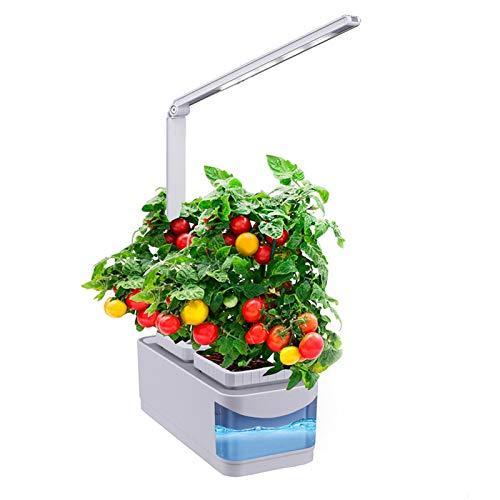 LDIW Huerto de Interior, Sistema de Cultivo hidropónico Cultivo en Interiores con Sistema de iluminación LED automático Growing Plant,US Plug