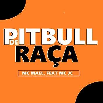 Pitbull de Raça