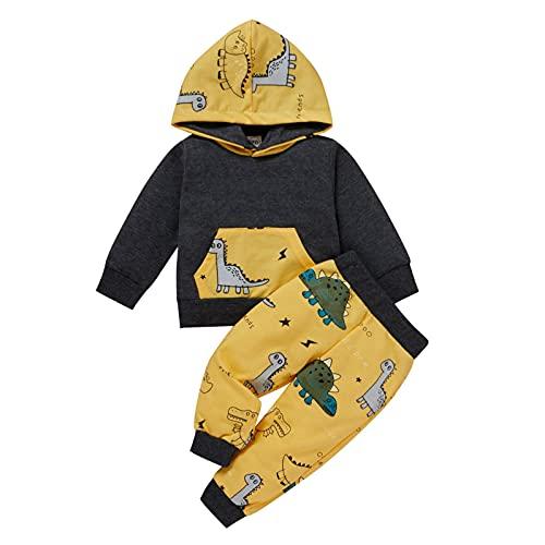 YWLINK Conjunto De Bebé NiñO Sudadera con Capucha Camisa De Manga Larga con Capucha PatróN De Dinosaurio + Pantalones 2 Piezas Trajes De Traje De Moda