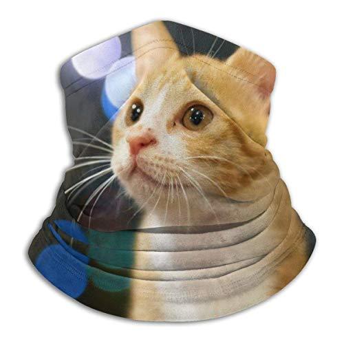 Welc my King Honig Katze Bild Unisex Mikrofaser Halswärmer Stirnbänder Schal Kopf Wickelhals für Männer Frauen Outdoor Sport Schwarz