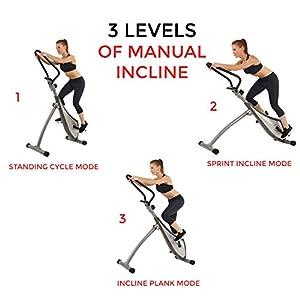 Sunny Health & Fitness SF-0419 Incline Plank Standing Stepper Bike