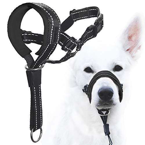 Walking Halter for Dogs