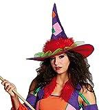 Rubies 1 1708 Crazy Witch Hut