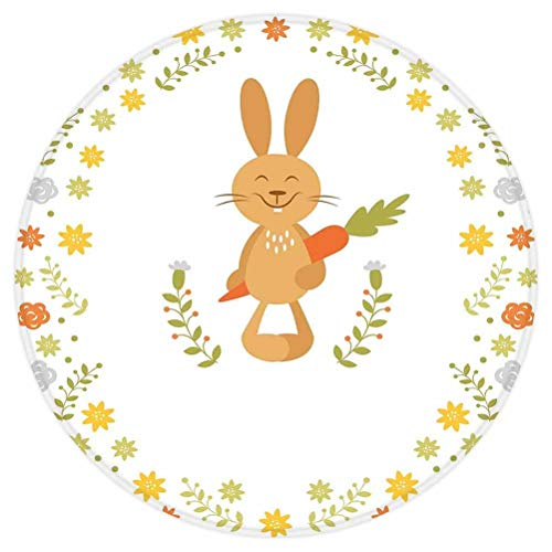Funny Round Area Rug,Cute Summer Illustration with Smiling Little Rabbit Carrots and Flowers Happy Bunny,for Living Room Bedroom Dining Room,Round 3'x 3',Multicolor
