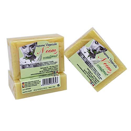 3 Savons naturel de Neem fabriqué exclusivement à partir d'huile de Neem et d'huile de coco - Pour traiter l'acné et toutes les impuretés de la peau - Action protectrice, régénérante et restructurante