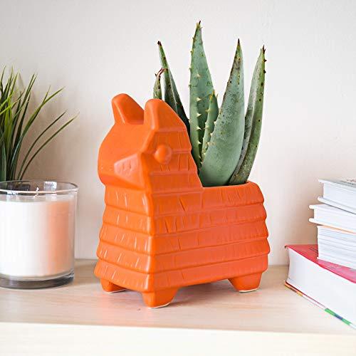 Gift Republic gr450105 Pinata plantenbak, oranje terracotta, 21 x 21 x 11 cm