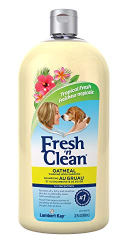 PetAg Fresh 'n Clean Oatmeal 'n Baking Soda Shampoo, Tropical Scent, 32 oz.
