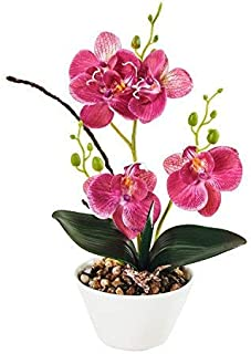 """IMIEE Silk Flowers with Pot 31cm in Height Artificial Orchid Phalaenopsis Arrangement Flower Bonsai with Vase for Room Table Centerpieces-H:12"""""""