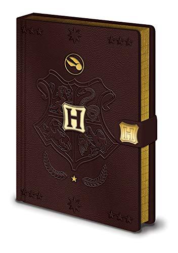 Harry Potter Carnet de Notes A5 Premium - Quidditch