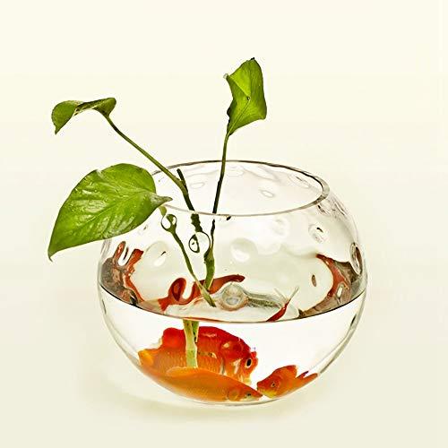 LINDU Vis tank eenvoudige vaas transparante kraal ronde groene appel aquatische glas vaas goudvis tank