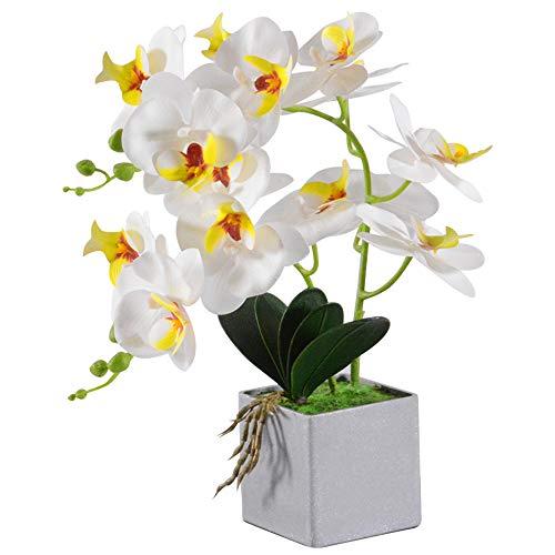 VIVILINEN Flores Artificiales Plásticos Flor de Phalaenopsis realistas Orquídea Mariposa Decoración Cálida para Hogar…