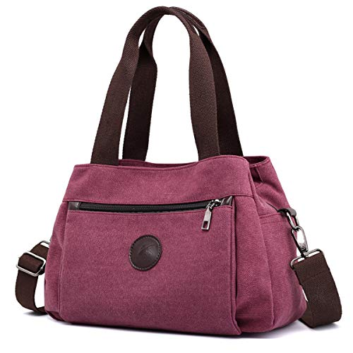 DOURR Hobo Handbags Canvas Crossbody Bag for Women, Multi Compartment Tote Purse Bags (Purple Coffee)