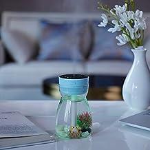 Jali Air Purifier & Cleaner Mini Air Humidifier QW-068 380ml Mini USB Air Humidifier Home Office Mute Phoenix Colorful Lam...